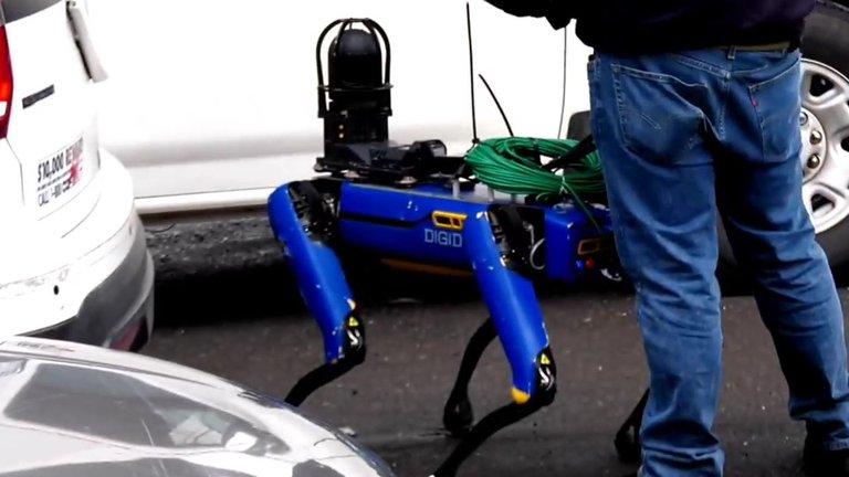 perro robot spot