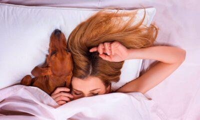 dormir con mi perro