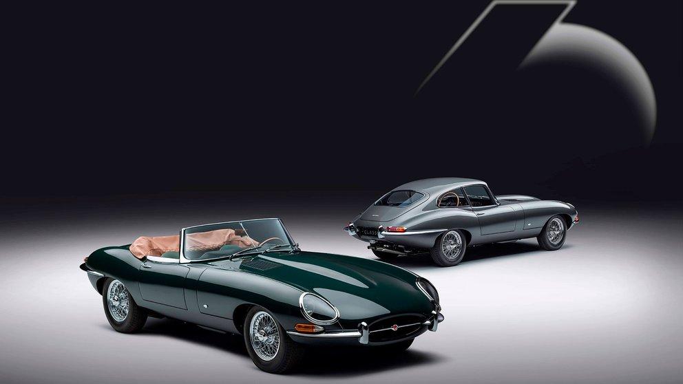 jaguar 12 ejemplares