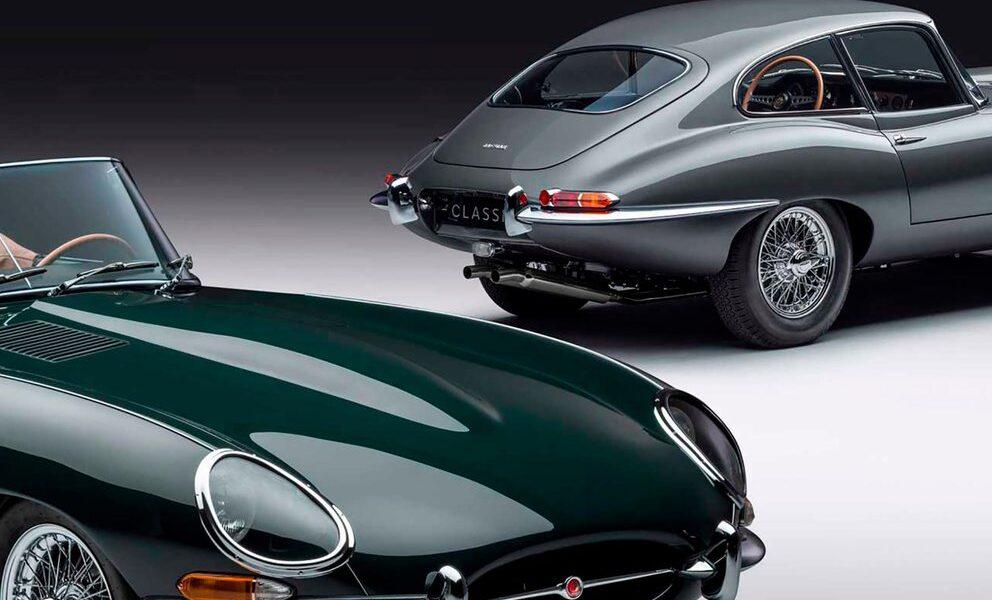 Jaguar ejemplares