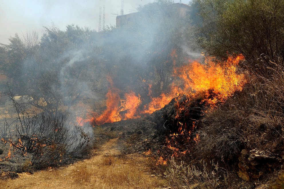 argelia incendio forestal